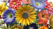Lyon_flowers_final
