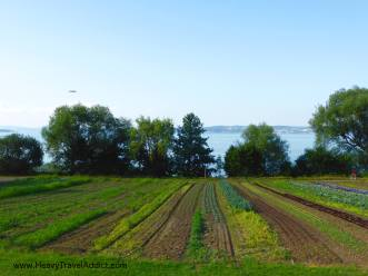 Bodensee10
