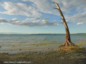 Bodensee8