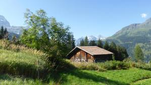 Jungfrau16
